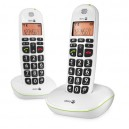 TELEPHONE EASY SANS FIL 100W DUO